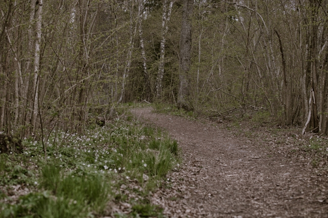 stigen, Lina Naturreservat-