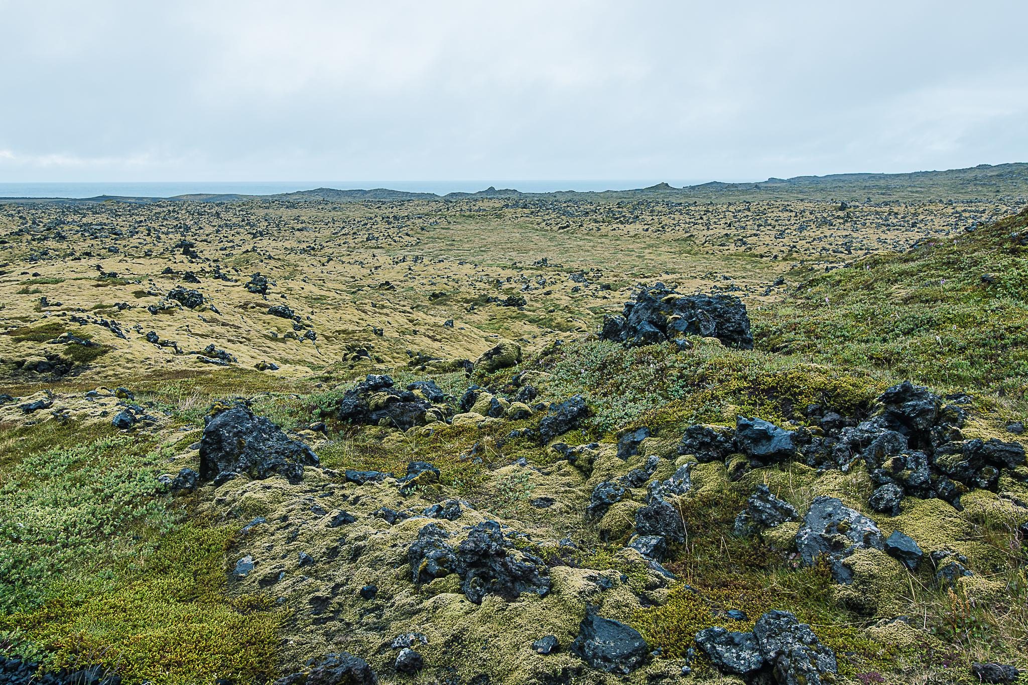 Island Snaefellsnes-1684