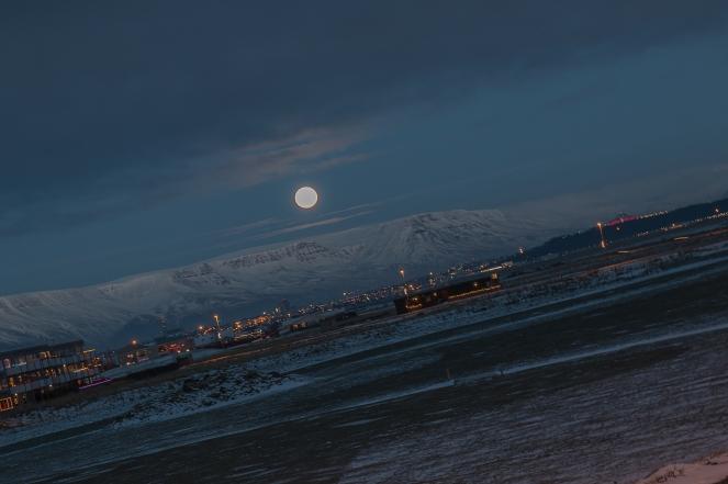 Reykjavik-4866