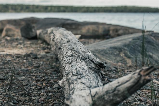 Gisesjön-7062