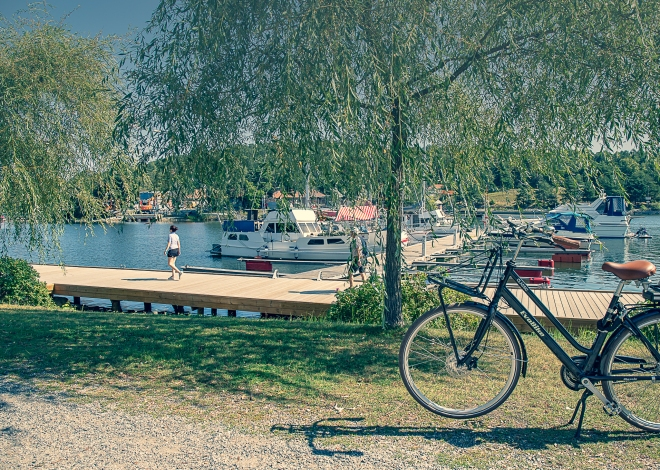 cykelpaus-8854
