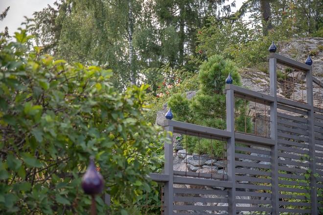 grannens staket-9089
